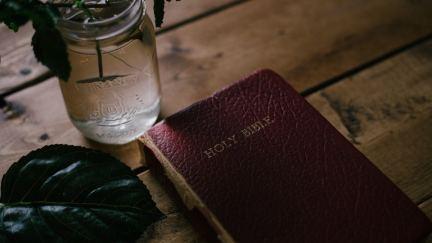 Sexe dans la Bible